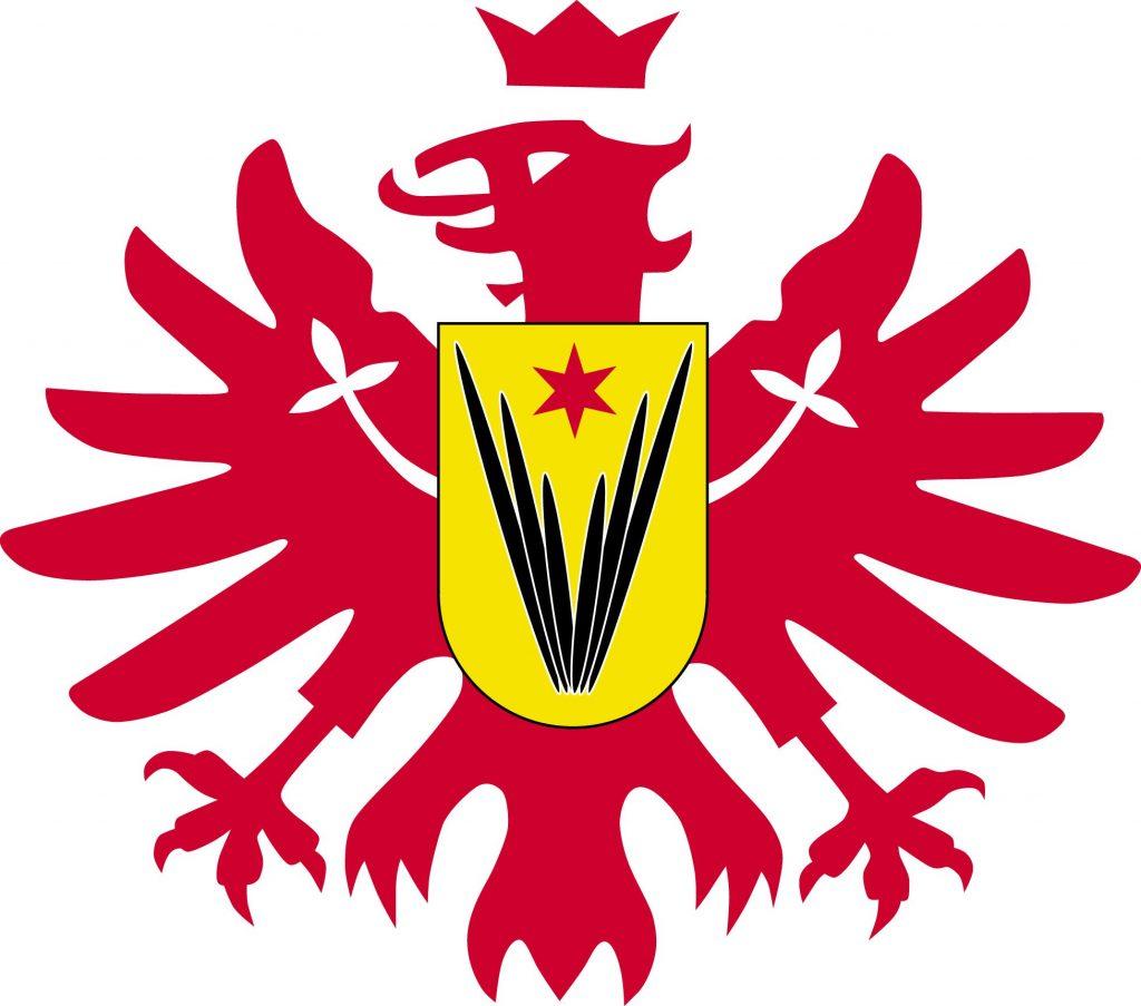 Logo EFC Schwalbach